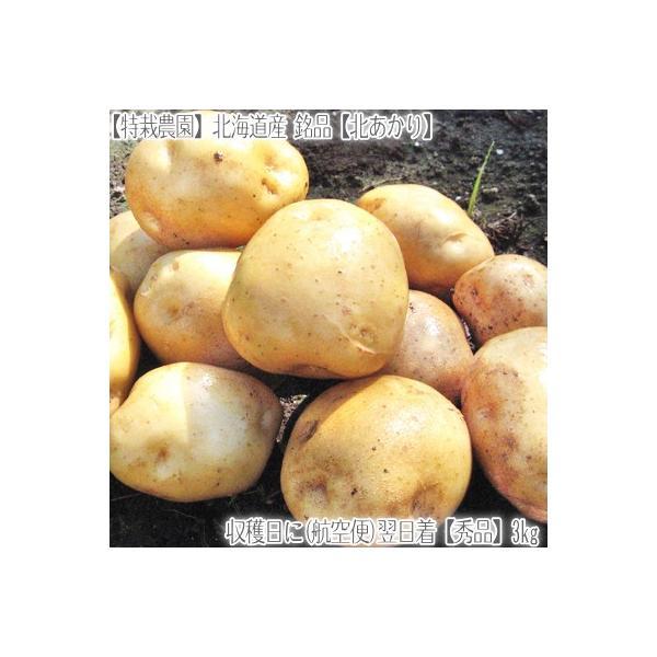 RoomClip商品情報 - 北海道産 きたあかり L 3kg(北海道 ジャガイモ 北あかり 特別栽培農園)北の大地の香りと上品な甘み、ギフトにも大好評、高評価ありがとうございます!