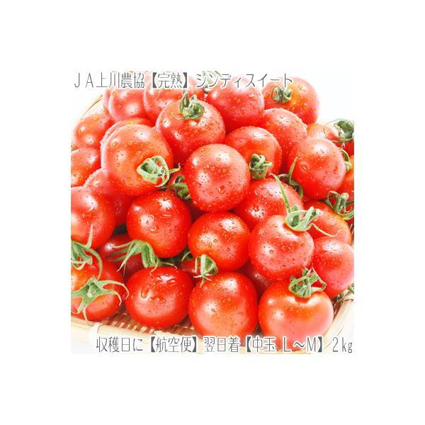 (送料無料 フルーツトマト 北海道産)シンディスイート L中玉 2kg(北海道 JA上川 航空便 収穫日に空輸で翌日着 新品種、絶妙なバランス 秀品)
