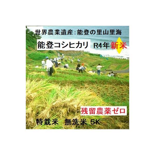 新米21年産 無洗米  コシヒカリ 特別栽培棚田米(食味値86) 5K 能登里山の米