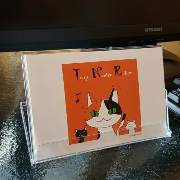 さくらねこポストカード(12枚セット)|doubutu-kikin|02