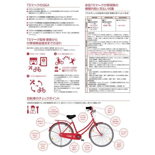 【傷害保険】TSマーク付帯保険【安全整備】|dplus|02
