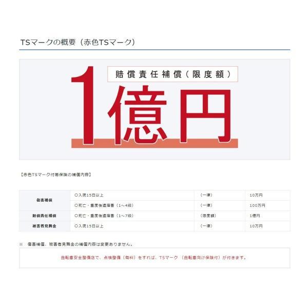 【傷害保険】TSマーク付帯保険【安全整備】|dplus|03