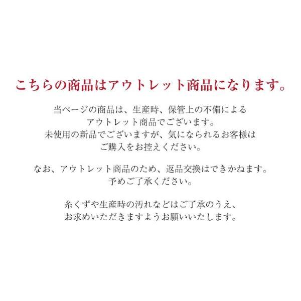 【送料無料】 [アウトレット] 折りたたみリュック 旅先で荷持が増えた時に便利! dream-shopping 02