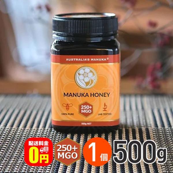 ★ アクティブ マヌカハニー MGO250+ 500g 1個 送料無料 合同会社サボコマース 蜂蜜 はちみつ