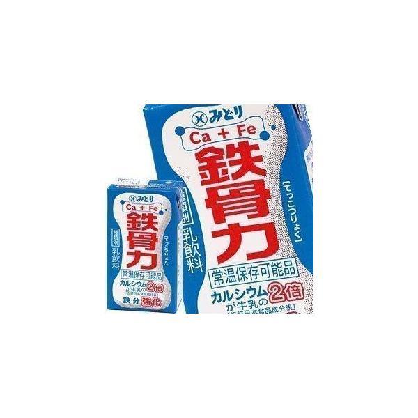 九州乳業 みどり牛乳 LL 鉄骨力 125ml紙パック×18本[賞味期限:製造日より60日] 送料無料 【3〜4営業日以内に出荷】