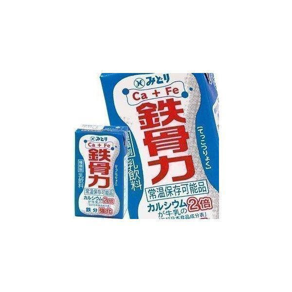九州乳業 みどり牛乳 LL 鉄骨力 125ml紙パック×36本[18本×2箱][賞味期限:製造日より60日] 送料無料 【3〜4営業日以内に出荷】