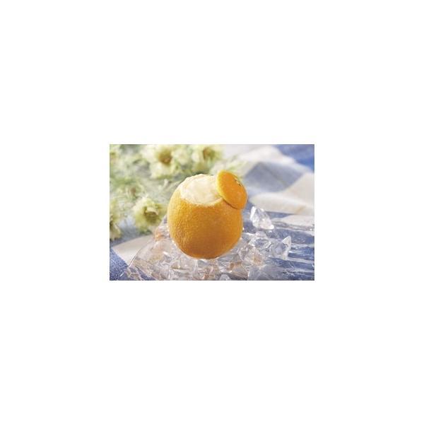 フレンズファクトリー)オレンジシャーベットラウンド1個 クール [冷凍] 便にてお届け 【業務用食品館 冷凍】