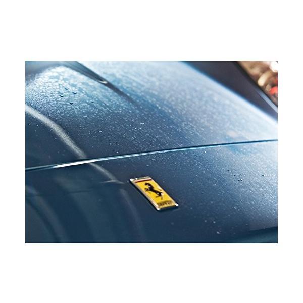 ウォータースポット除去剤   ジーオン GYEON Q2M-WS  500ml  ウォータースポットリムーバー 水アカ除去剤【在庫あり】|drive|02