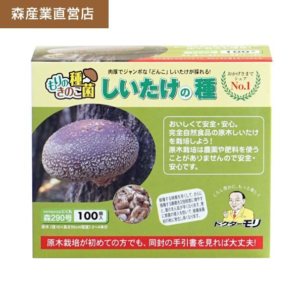 シイタケ種駒 【しいたけ種駒100個】 [しいたけ菌/椎茸菌/しいたけ栽培/シイタケ栽培/椎茸栽培] 日本で一番売れてます!