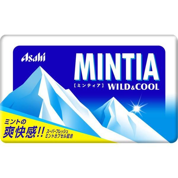 MINTIA(ミンティア)ワイルド&クール 50粒 メール便8個まで