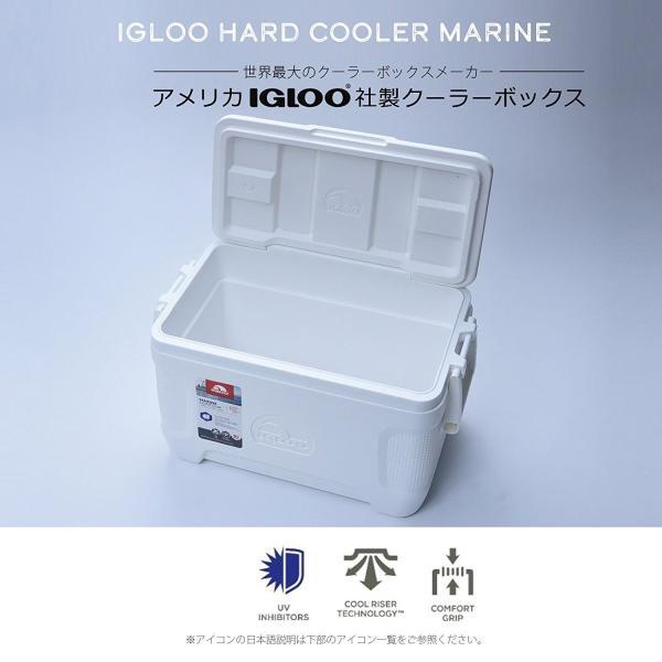 クーラーボックス 小型 釣り アウトドア igloo(イグルー) クーラーボックス マリーン コンツアー 25 00049644|dstyleshop|02