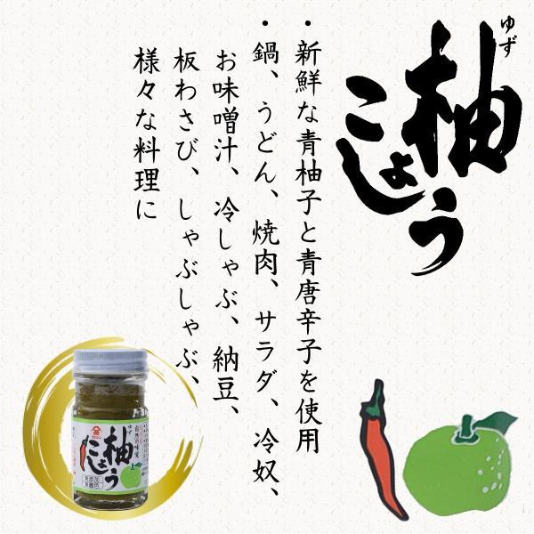 フジジン 柚こしょう 60g×3本 まとめ買いセット お得セット薬味 美味しい フジジン 柚こしょう 60g×3本セット|dstyleshop|02