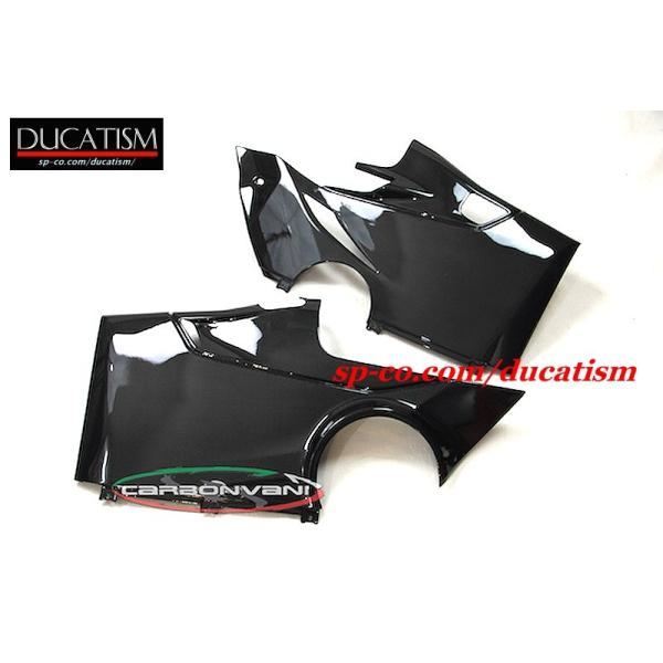 CARBONVANI Panigale V4 フルフェアリングkit (ロードバージョン)DUCATI パニガーレV4|ducatism|10