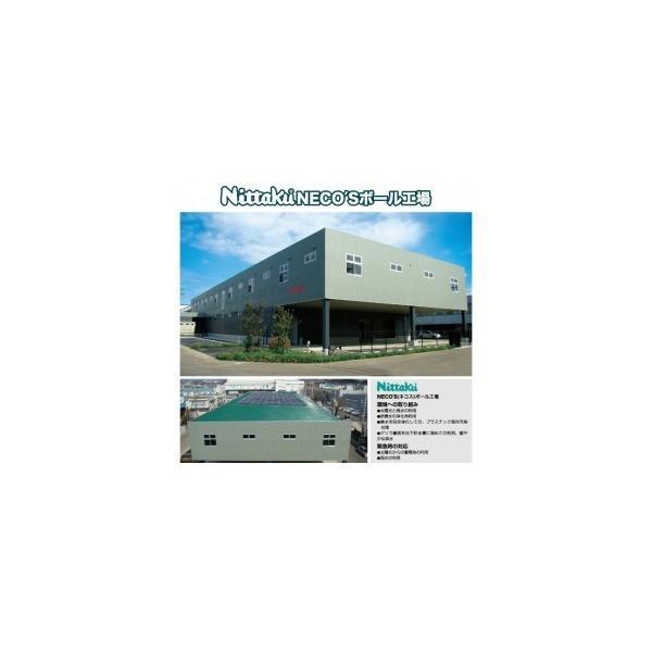 ニッタク(Nittaku) 卓球 ボール 硬式40ミリ 練習球 プラ2スター PLS 2-STAR (3個入) NB-1320|dugoutshop|03