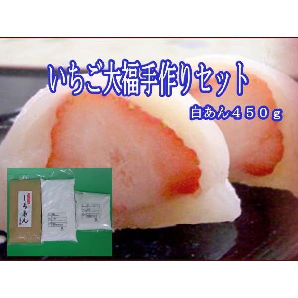 いちご大福手作りセット『白あん 450g』