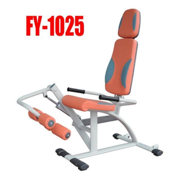 高齢者用機能訓練(リハビリ用)油圧式レッグエクステンション/カールFY-1025膝関節周辺の改善 e-bodyfitness