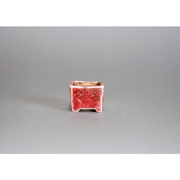 プチ盆栽鉢 織部釉 正方盆栽鉢 小鉢 小さい鉢 p0143|e-bonsai|02
