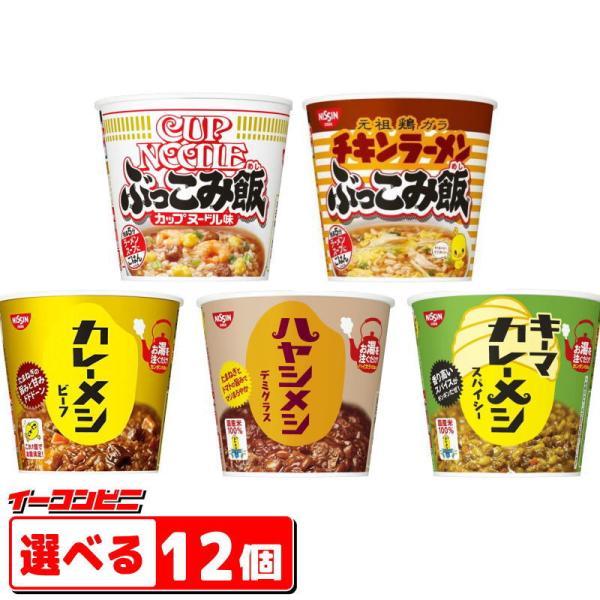 日清カレーメシ・ハヤシメシ・ぶっこみ飯6食入選べる2ケース(12個)『(沖縄・離島除く)』
