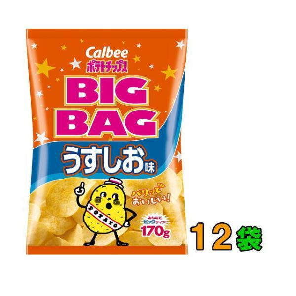 カルビー ポテトチップス BIGBAG(ビック・ビッグ) 170g うすしお味 1ケース(12袋) 『送料無料(沖縄・離島除く)』