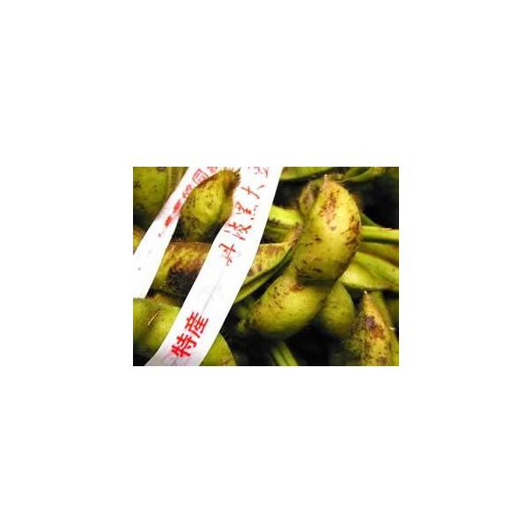 赤井さんの丹波黒豆枝豆「若さや」 約3kg|e-hanafusa|02