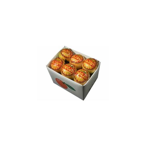 栗山園の国産バレンシアオレンジ  うれしい小箱 2kg入り