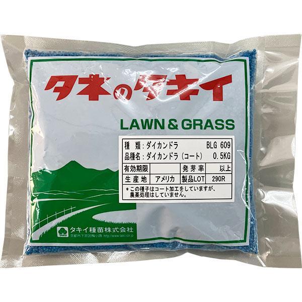 タキイ種苗 緑肥 グランドカバー ダイカンドラ コート 0.5kg M2