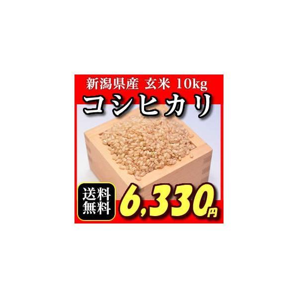 新潟県産こしひかり玄米 コシヒカリ 10キロ おいしいお米