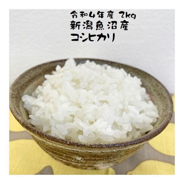 新米 米 2kg 魚沼産コシヒカリ お米 新潟県産 令和3年産