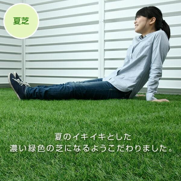 人工芝 芝生 ロール 1m×10m 芝生マット【あすつく】|e-kurashi|06