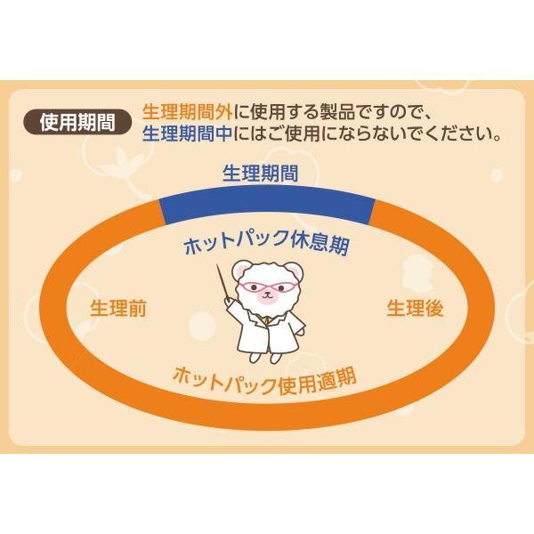 くまこのぽっかぽか温めライナー(7個入り×2セット) ライナー 無香料 オーガニック コットン コットン100% 温活 ナプキン e-kurashi 04