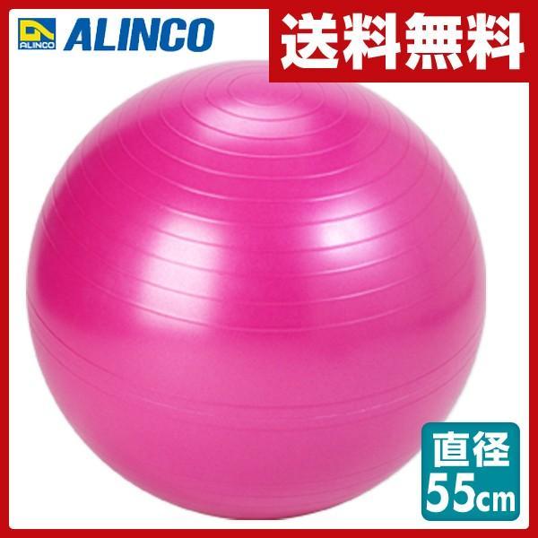 エクササイズボール 55cm エアポンプ付 EXG124P ピンク バランスボール フィットネスボール ヨガボール|e-kurashi