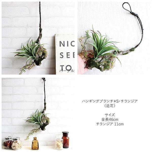 フェイクグリーン ハンギングブランチ S ランジア エアプランツ 多肉植物 造花 CT触媒|e-mintcafe|03