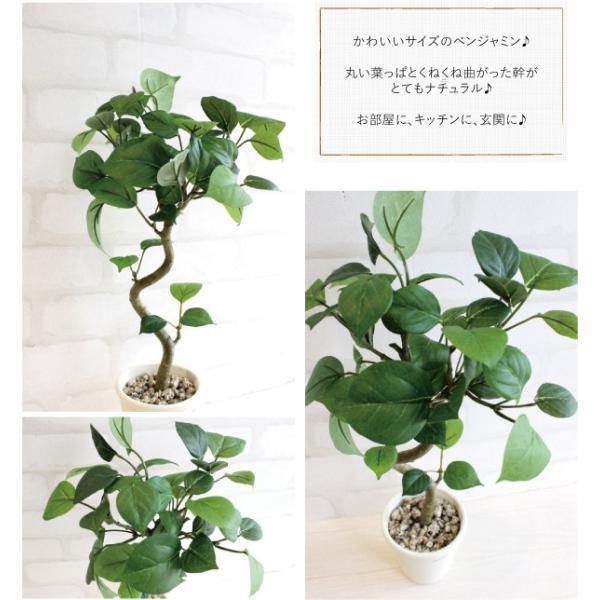 ミニ観葉植物 丸葉ベンジャミン 40cm 造花  フェイクグリーン 観葉植物 CT触媒|e-mintcafe|02