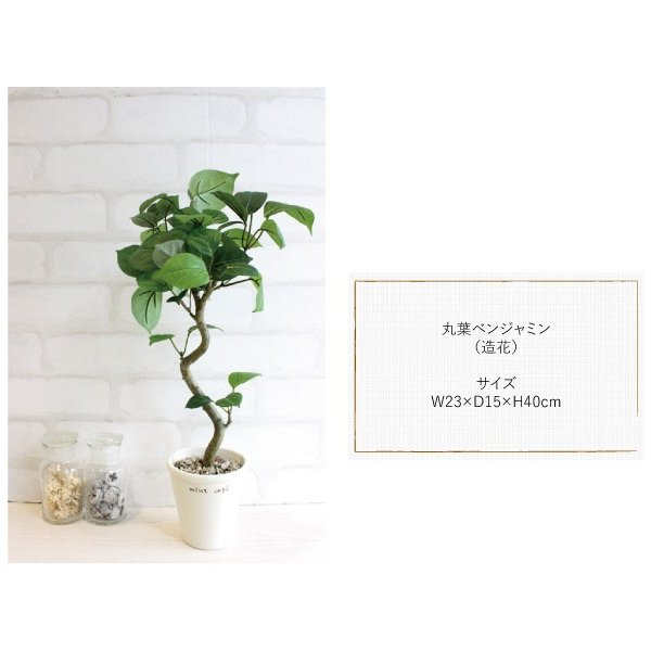 ミニ観葉植物 丸葉ベンジャミン 40cm 造花  フェイクグリーン 観葉植物 CT触媒|e-mintcafe|03