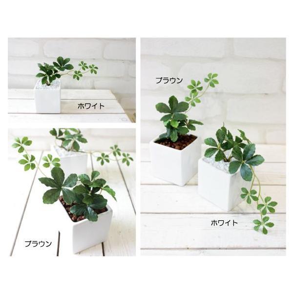 観葉植物 ミニシサスアイビープラント シュガーバイン 造花 インテリア フェイクグリーン|e-mintcafe|02