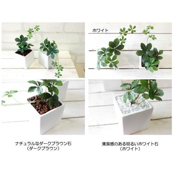 観葉植物 ミニシサスアイビープラント シュガーバイン 造花 インテリア フェイクグリーン|e-mintcafe|03