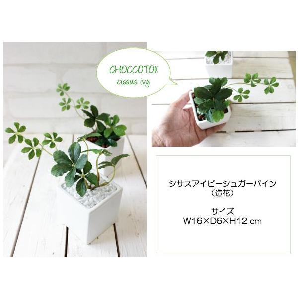 観葉植物 ミニシサスアイビープラント シュガーバイン 造花 インテリア フェイクグリーン|e-mintcafe|04