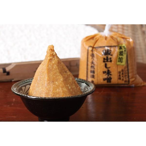 【明治28年創業の老舗種麹屋が長期熟成、手作りにこだわった無添加味噌】石黒種麹店 蔵出し味噌  蔵出しみそ 無添加みそ 1kg |e-miso