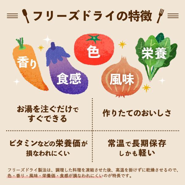 アマノフーズ フリーズドライ よくばり 洋食 16食 セット|e-monhiroba|03