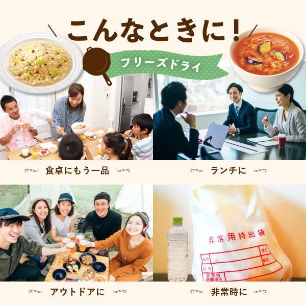 アマノフーズ フリーズドライ よくばり 洋食 16食 セット|e-monhiroba|06
