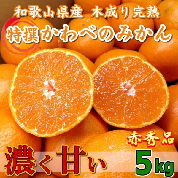 甘い みかん 5kg 和歌山 赤秀品 通販 送料無料 木なり 完熟 かわべのみかん