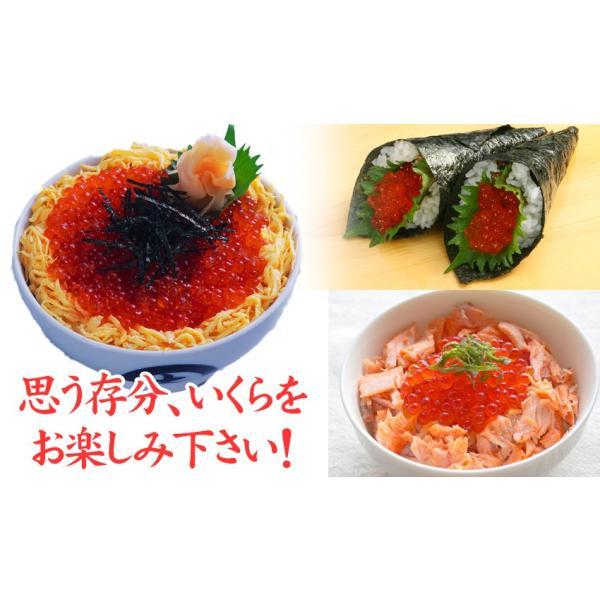 紅鮭いくら醤油漬け500g(250g×2) /イクラ/がってん|e-rdc|05