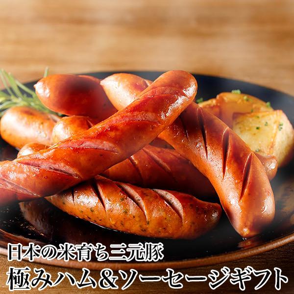 日本の米育ち三元豚 極みハム&ソーセージギフト 平田牧場/EXT19-2 [冷蔵便] お中元ギフト/贈り物にもどうぞ
