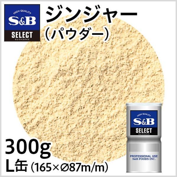 セレクトジンジャー パウダー L缶300g 業務用生姜 ショウガ お徳用しょうが SB S&B エスビー