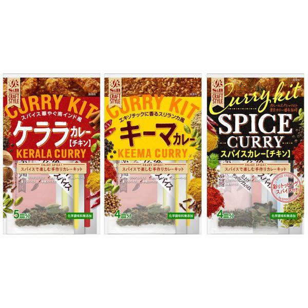 CRAFT STYLE 手作りカレーセット3種セット  S&B SB エスビー食品
