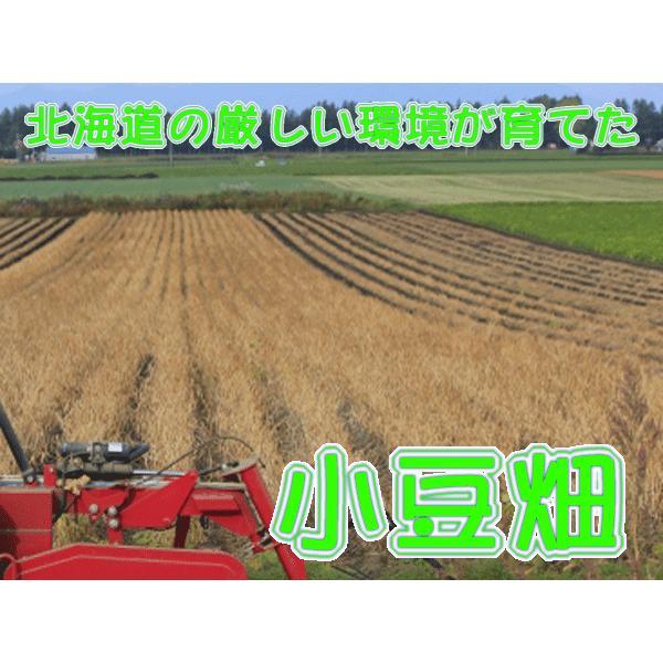 水ようかん 福袋 老舗の 濃厚 水羊羹 夏季限定 送料無料 セット 18個|e-sjapan|04