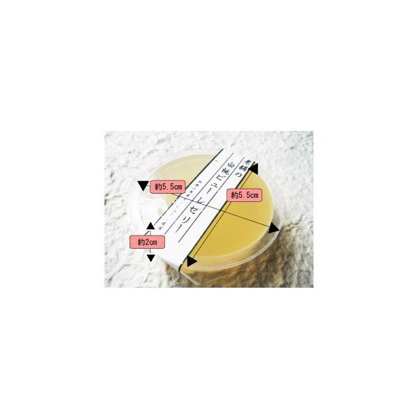 フルーツ ゼリー お試しセット 老舗 白桃 ピューレ ゼリー 送料無料 6個 メール便商品|e-sjapan|05