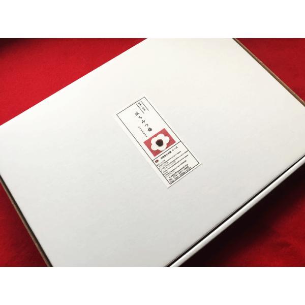 紀州南高梅 使用 詰合せ 個包装 はちみつ梅 和紙調 厳選和スイーツ 10個 セット|e-sjapan|08