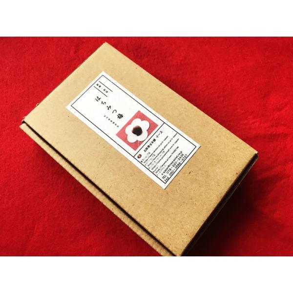 お試しセット 紀州南高梅 使用 はちみつ梅 個包装 和紙調 送料無料 厳選和スイーツ 3個  メール便商品|e-sjapan|08