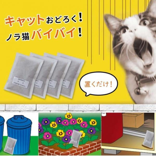 野良猫 撃退 対策 猫よけ キャットおどろく ノラ猫バイバイ! クリスマス ギフト プレゼント 贈り物 e-zakkaya 02